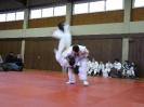 Kyu-Prüfung 22.12.2012_10